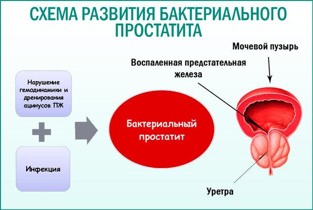 https://ic1.static.km.ru/sites/default/files/imagecache/620/illustrations/article/2020/3/9/1_5.jpg